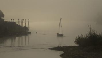 Brume sur la Loire   H2A8299
