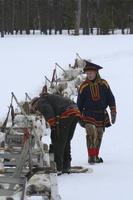 Éleveur de renne en laponie finlandaise(comuneauté samis du lac Inari )