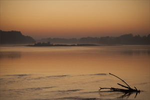 La Loire au aurore